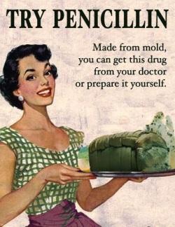 DIY Penicillin